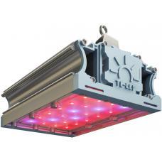 Светодиодный фито светильник LL-DS-FITO 42Вт