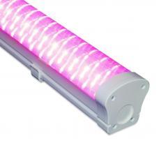 Светодиодный фито светильник LL-DS-FITO 30 UN