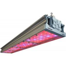 Светодиодный фито светильник LL-DS-FITO 168Вт